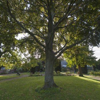 Jardin-public-1-©Vincent Ferron
