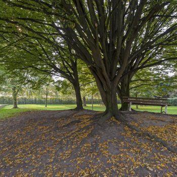 Jardin-public-11-©Vincent Ferron