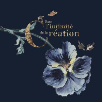 Dans l'intimité de la création