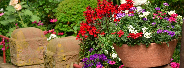 Comme chaque année, la Ville de Pont-Audemerorganise le concours des balcons et jardins fleuris. Le jury passera début juillet pour établir le palmarès 1
